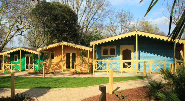 Gir Lion Lodge will open at ZSL Zoo London in May this year