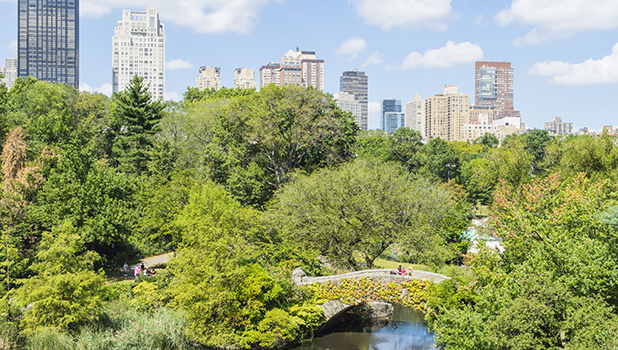 The Pond, Central Park, Manhattan, New York City, New York, United States of America, North America