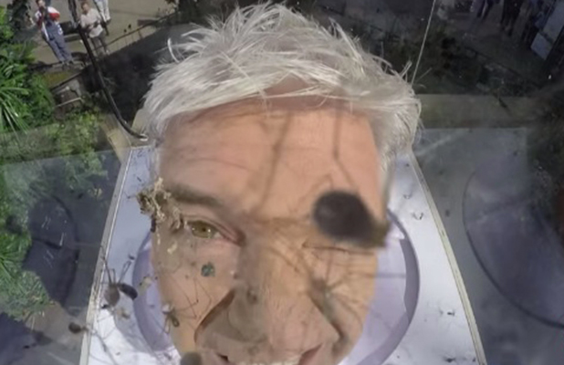 Phillip Schofield tries to do a spider challenge on This Morning Sept 2016